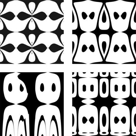 Examples of ambiguous images containing non-overlapping faces and flowers.