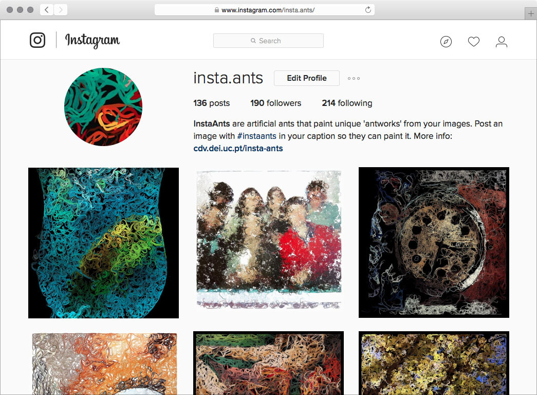 Screenshot of the Insta.ants profile